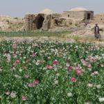 Αφγανιστάν: Η χώρα των ιππέων